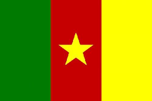 Unbekannt Fahne Kamerun Flagge Flaggen Fahnen 90x150 cm