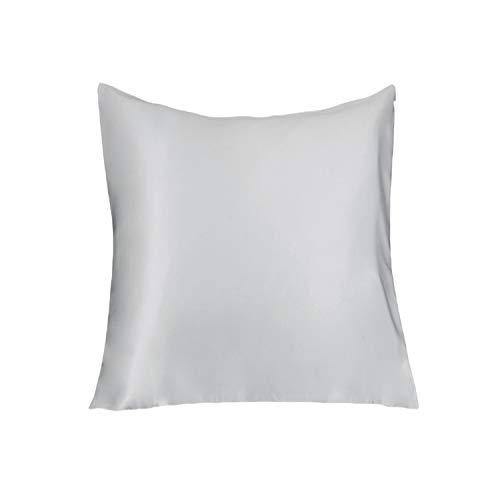 Lulusilk Taie d'oreiller pour cheveux et peau 100 % pure soie 19 Momme avec fermeture Éclair cachée 1 unité 60 x 60 cm Grise argentée