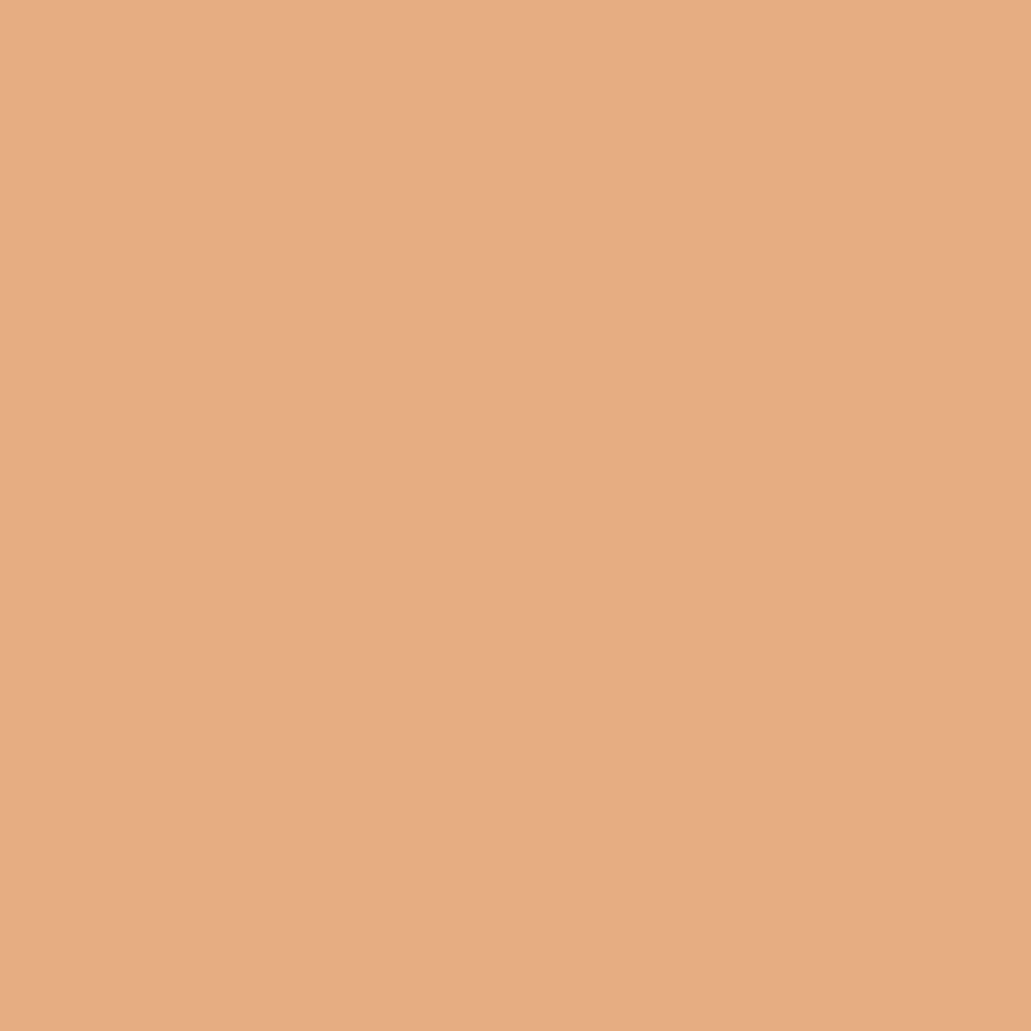 アヒルサーフィン憧れSANMIMORE(サンミモレ化粧品) UVパクト 51号アイボリー (レフィル 替パフ付)