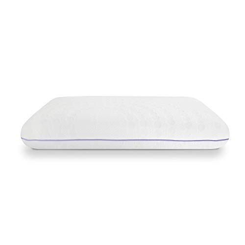 SensorPEDIC Lavender Bed Pillow, Standard, White/Purple