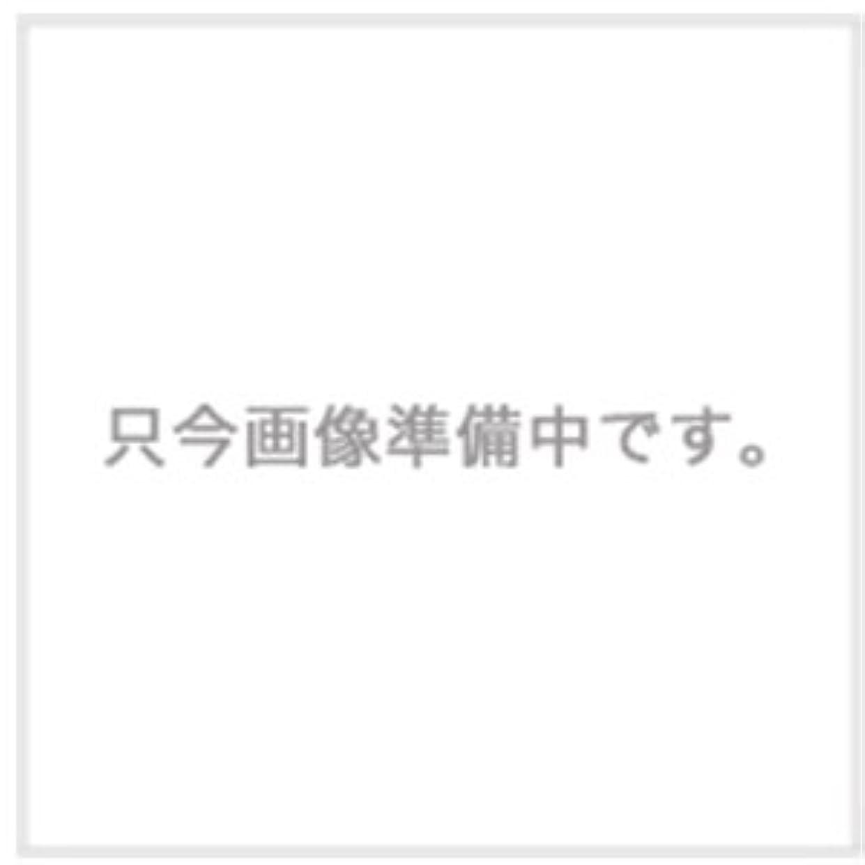 領収書トレイ夫ハホニコ ザ?ラメラメ トリートメント No.1 1000g用ハードケース