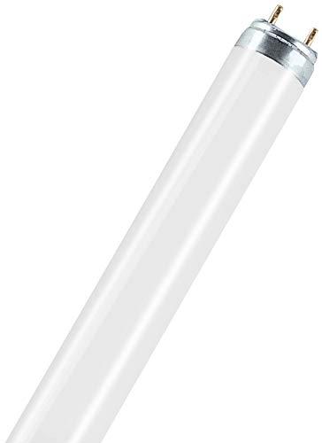 Leuchtstofflampe L 18 Watt / 965 (72 Biolux) - Osram