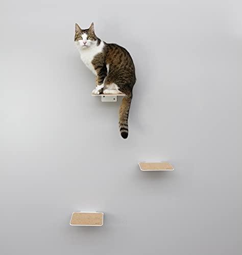 LucyBalu Mur d'escalade pour chats, lot de 3 escaliers Steps pour chats, marches de 18 x 18 cm, marches XL de 20 x 24 cm, blanc et anthracite