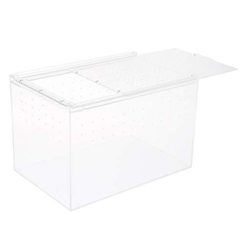 joyMerit Klare Acryl Terrarium Box Reptilien & Amphibien Eidechsen Schildkröten Zucht Box - L