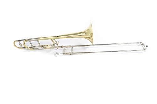 Roy Benson Rb701156 Trombone Tenore in Sib-Fa Tt-242F, Finitura Laccato, Custodia Leggera