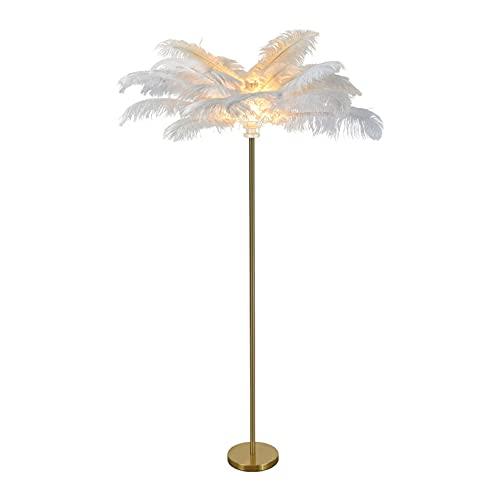 Natuogo Lámpara de pie de pie Moderna, iluminación de Suelo con Pantalla de Plumas, iluminación de Suelo para Sala de Estar, Dormitorio, Lectura