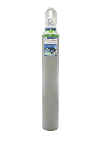 Argon 4.6 10 Liter Argonflasche Gasflasche zum WIG MIG Schweißen kürzlich geprüft mit aktuellem TÜV bis 2024