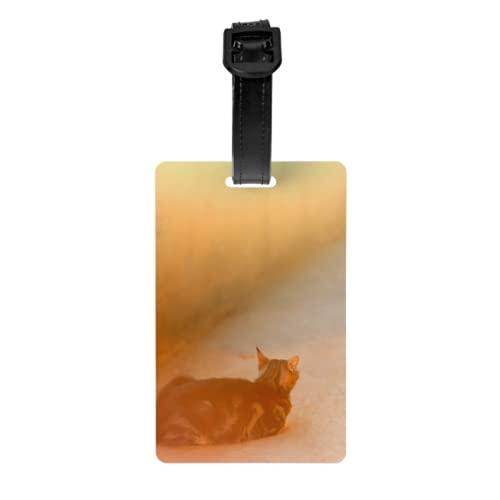Gepäckanhänger 2er Set, Braun Tabby Katze Liegeplatz Sonnenbaden Gepäck Ausweiskarten Mit Abnehmbarer Handschlaufe Und Adresskarte Für Reisetasche Koffer