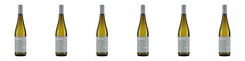 Wein- und Sektgut Weber Scheurebe SE 2019 Lieblich (6 x 0.75 l)