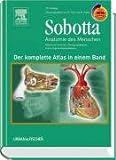 Sobotta - Der komplette Atlas der Anatomie des Menschen in einem Band mit StudentConsult-Zugang: Allgemeine Anatomie - Bewegungsapparat - Innere Organe - Neuroanatomie - Reinhard Putz