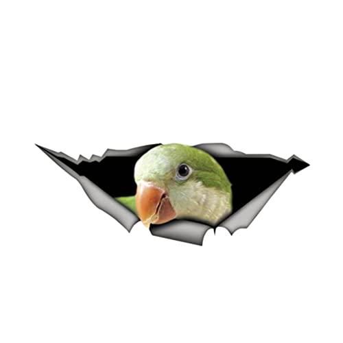 Divertido Parakeet calcomanía 3D para coche de mascotas Accesorios de vinilo para coche Cubierta de vinilo resistente a los arañazos PVC 13 cm x 5 cm (nombre del color: beige, tamaño: 38 cm x 15 cm)