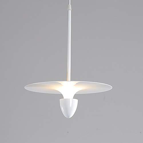 Warm Home hanglamp met draaischarnier voor eenpersoonsbed, van ijzer, Noors, eenvoudige persoonlijkheid, creatieve lamp, nachtkastje, bar Ristorante Caffetteria Negozio 30 x 30 x 40 cm bel