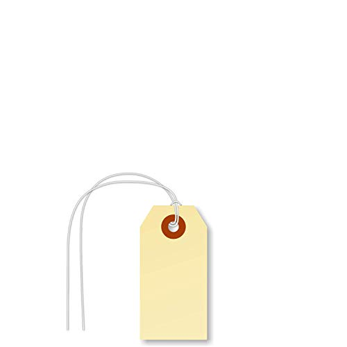 """SmartSign Pack of 1000 Blank Shipping Tags with Attached String 