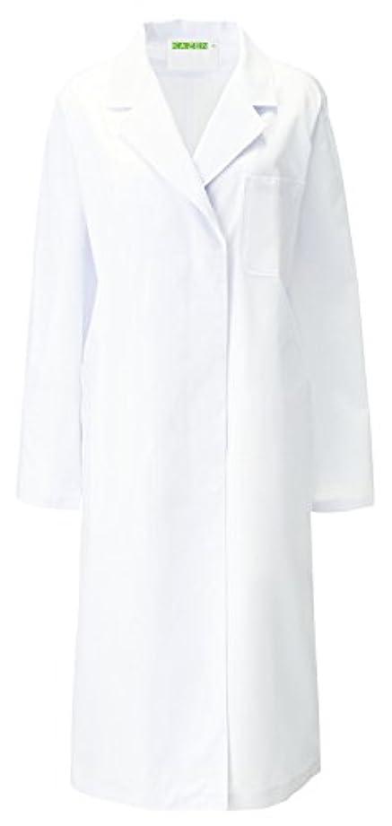 アミューズ千パフKAZEN アプロン レディス診察衣S型 長袖 120-20(ホワイト) 3L