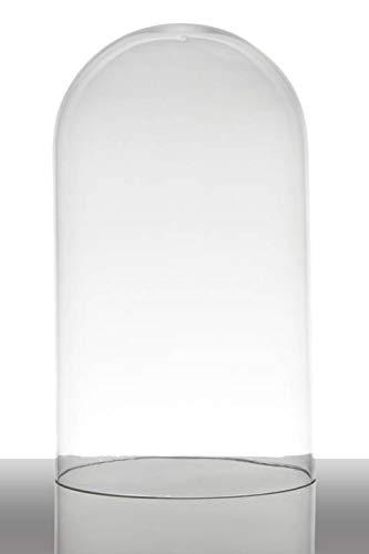 INNA-Glas Set 2 x Campana de Cristal Adelina, cilíndrica - Redonda, Transparente, 28cm, Ø 16.5cm - Juego de Campanas de Cristal - florero Campana