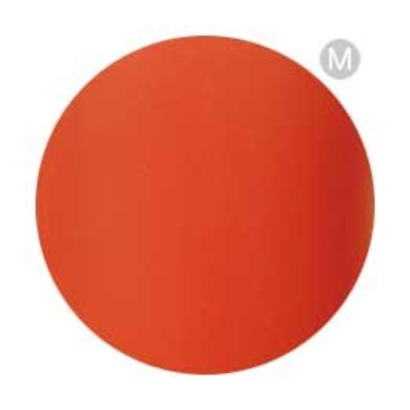 フェザーフレームワーク無一文Palms Graceful カラージェル 3g 077 タンジェリンオレンジ