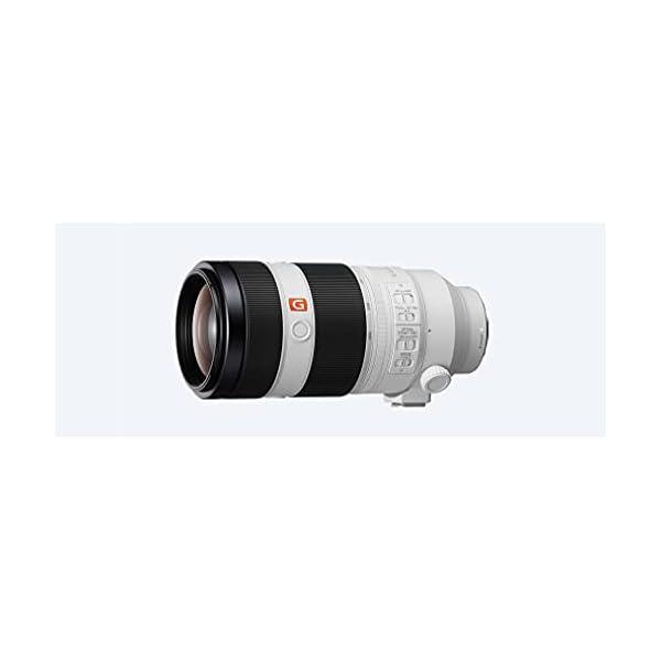RetinaPix Sony Super telephoto Zoom 100-400mm G Master Lens