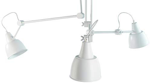 Ferribiella IGN020B Tappetini Igienici per Cani, Basic, 60X60 cm, Bianco - 300 Tappetini (6 Confezioni da 50 Pezzi)