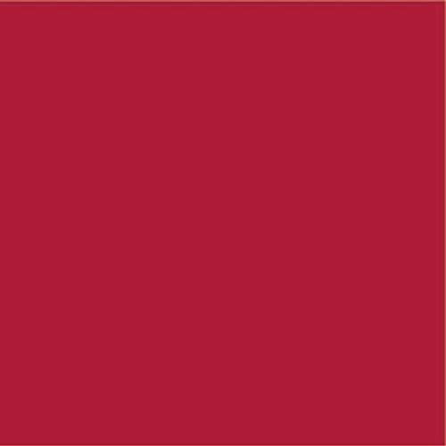 molo Stoffe Sweatstoff leicht Uni rot METERWARE ÖKOTEX Nicht angeraut 1,5m breit - ab 0,5 Meter