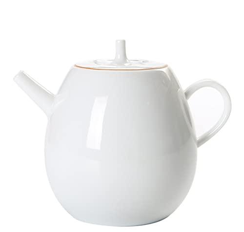 Juego de té de Kung Fu, pintado a mano, porcelana blanca, té filtrado, olla de salud, olla individual de cerámica de 250 ml