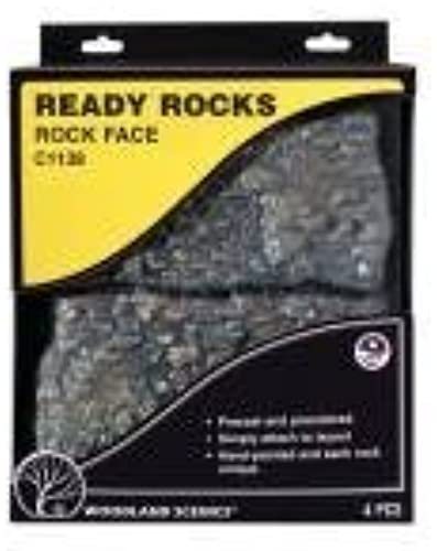 Woodland Scenics C1138 Rock Face Ready Rocks by Woodland Scenics