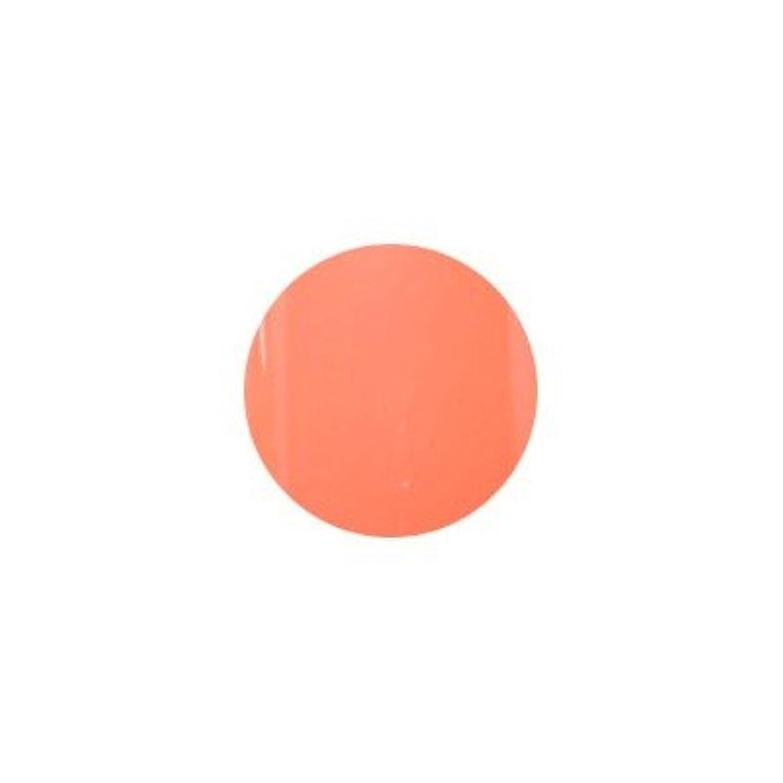 ベース夜コンテンツプティール カラージェル ラヴィング L14 ビタミンオレンジ