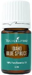 Top 10 Best idaho blue spruce essential oil Reviews