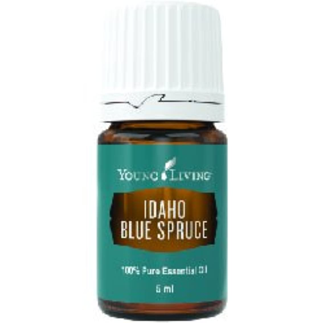 親愛なあいにく森アイダホブルースプルースエッセンシャルオイル5ml by Young Livingエッセンシャルオイルマレーシア Idaho Blue Spruce Essential Oil 5ml by Young Living Essential Oil Malaysia
