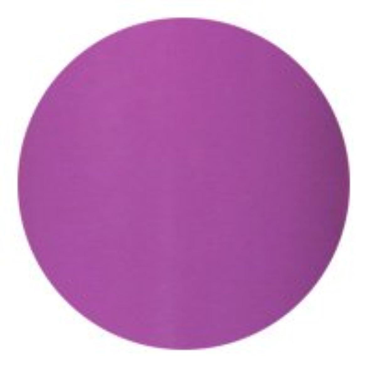 受ける苦いスノーケル★AKZENTZ(アクセンツ) UV/LED オプションズ 4g<BR>073 マジェスティックバイオレット