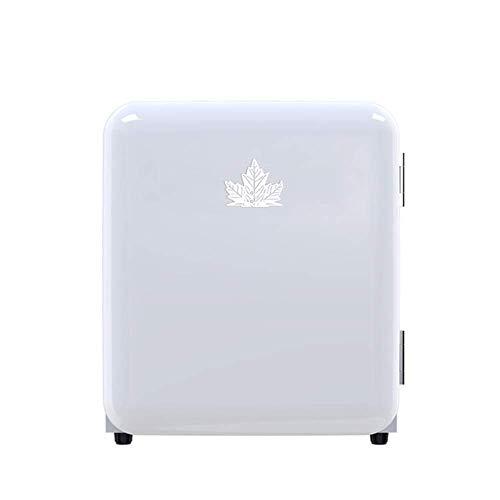 Mini refrigerador impecable / refrigerador retro cosmético portátil con 6 espacios de almacenamiento e iluminación LED, se usa para maquillaje y cuidado de la piel, también se puede usar en el bar de