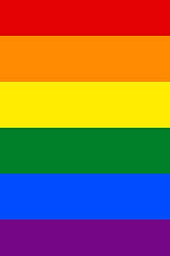2021 Daily Planner Rainbow Gay Flag LGBTQ Design 388 Pages: 2021 Planners Calendars Organizers Datebooks Appointment Books Agendas