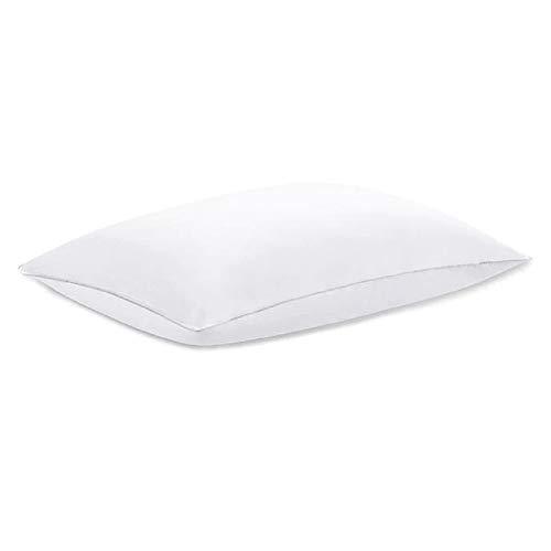 Claritin Cotton Back/Stomach Sleeper Pillow - White