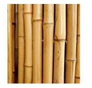 CANNE IN BAMBOO PER SOSTEGNO ORTAGGI E ALTRI USI DA CM 210 IN CONFEZIONE DA 15 CANNE