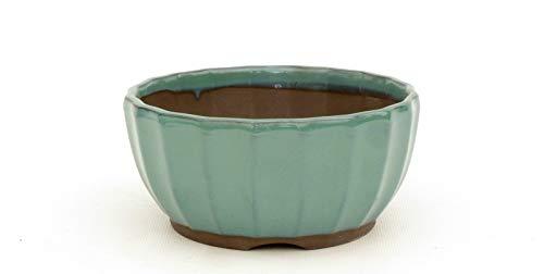 Bonsai Pavia | Macetas para Bonsais Japonesa Esmaltada 12,5 cm | con Forma de Flor de Loto | Esmaltada en Color Verde Agua | Tamaño 12,5x7 cm