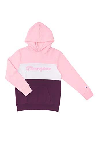 Champion Colorblock Sweatshirt