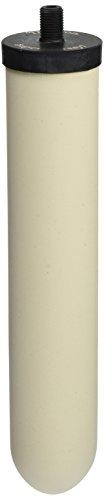 Doulton W9121750 10-Inch Super Sterasyl Ceramic Filter Candle