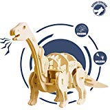 ROKR Robotic Dinosaur Toys- Model Woodcraft Construction Kit-Robot Toy Set- Best Educational Gifts for Boys and Girls 6 7 8 9 10 11 12 13 14 15 Year Old and Up