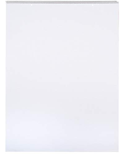 School Smart - 85325 Chart Tablet, 24 x 32 Inches, Unruled, 25 Sheets