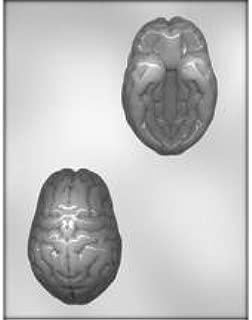 3 Pack Brain Mold