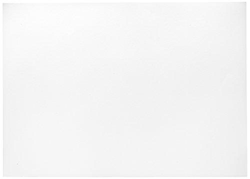 Herlitz 227108 Tonzeichenkarton 50 x 70 cm, 10 Stück, weiß