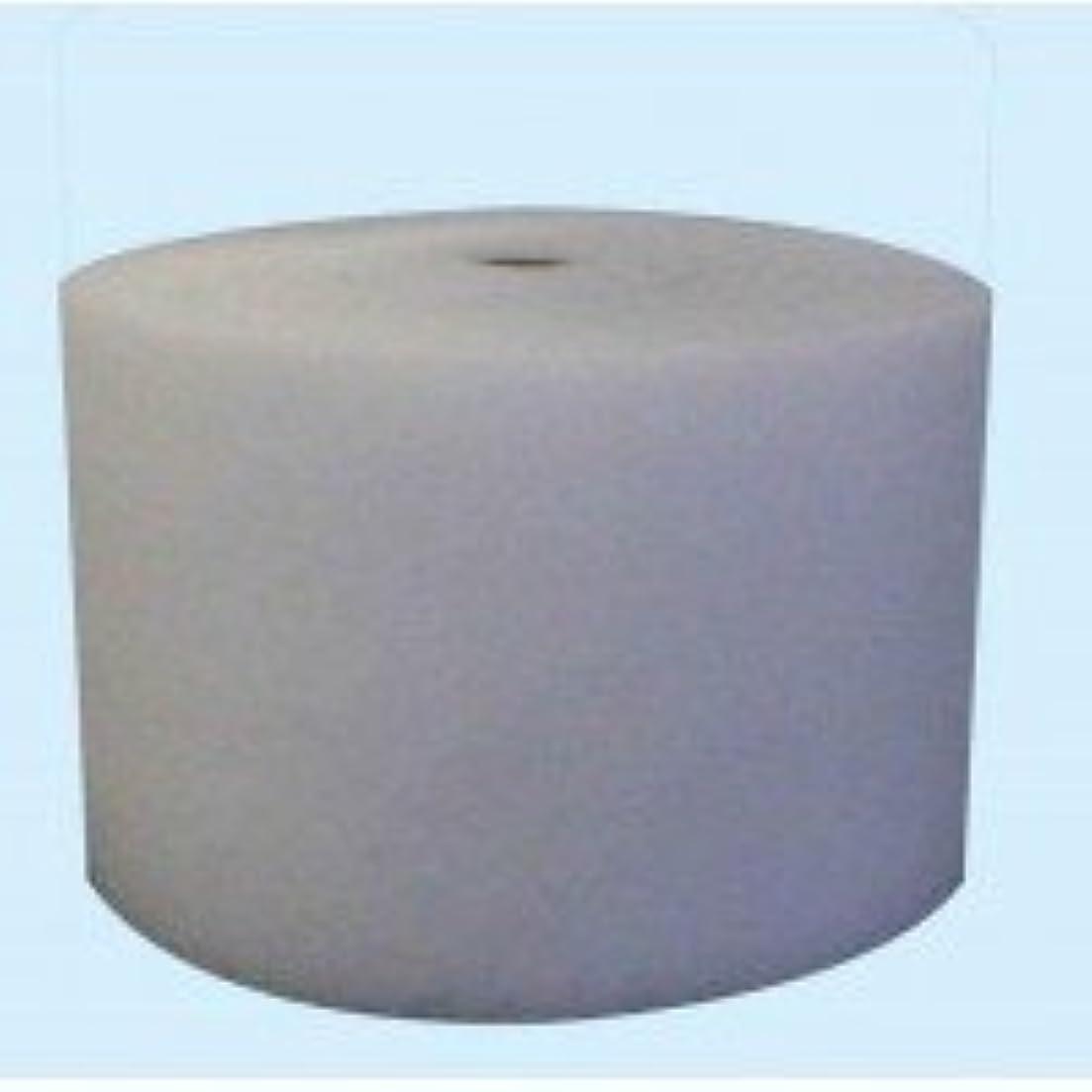 知恵酸化する家主エコフレギュラー(エアコンフィルター) フィルターロール巻き 幅30cm×厚み2mm×50m巻き W-4053