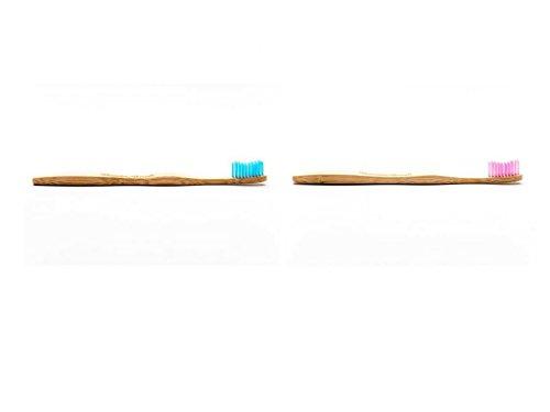 Humble Brush - Cepillo de dientes para adultos (tamaño mediano, 2 unidades), color azul y morado