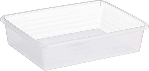 Rotho Linus Aufbewahrungsschale A5, Kunststoff (PP) BPA-frei, transparent, A5 (25,5 x 19,5 x 6,0 cm)