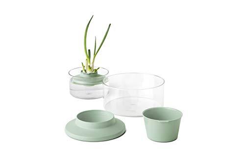 Brabantia Tasty+ Kit para conservar y plantar hierbas y verduras, color jade green