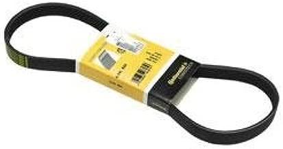 for BMW Mini (10-11) Belt Alternator Water Pump A/C