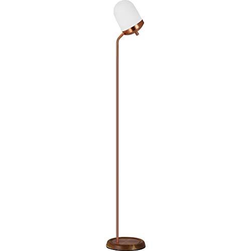NYKK Lámpara de pie Lámpara de pie de Estudio de la Sala de Estar del Dormitorio de la Sala de Estar del Dormitorio de la lámpara llevada Vertical Creativa Lámpara de Piso