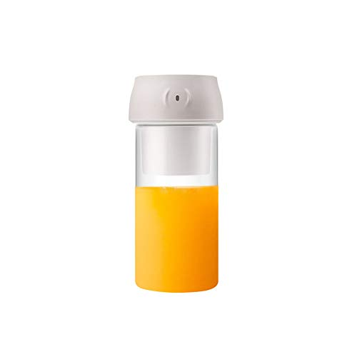 NBLYW Mini-mixer, draagbaar, 300 ml, USB-oplaadbaar met 2 messen, BPA-vrij, persoonlijk voor smoothies en smoothies, kleine citruspers voor kantoor en reizen