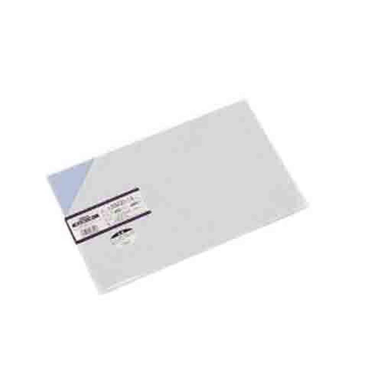 時代パイプライン社会主義者光 塩ビ板Pブルー0.5×200×300mm EB235-19