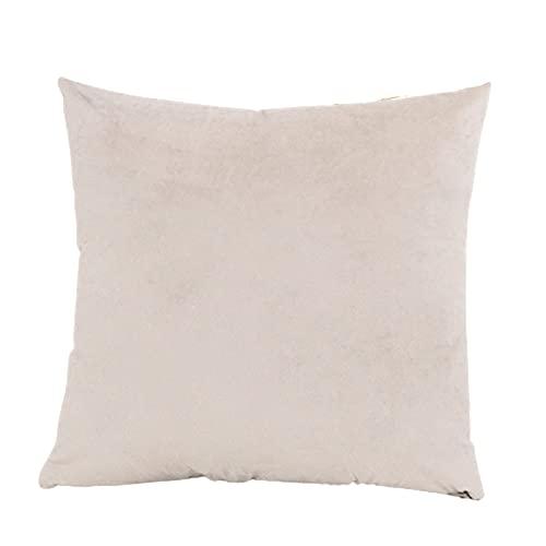 Delisouls Funda de almohada de terciopelo, fundas de cojín decorativas, color sólido, cuadrada, suave, acogedora, para decoración de...