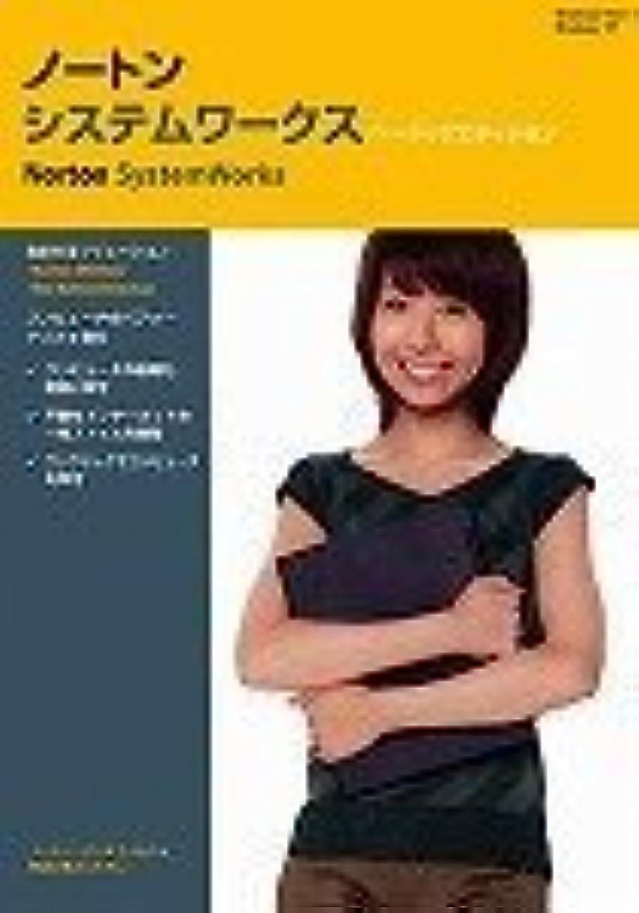 レキシコン障害液体【旧商品】Norton SystemWorks Basic Edition 11.0